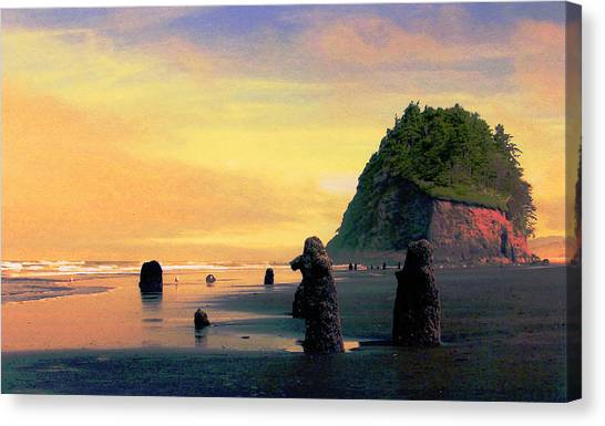 Ancient Trees At Neskowin Beach Canvas Print