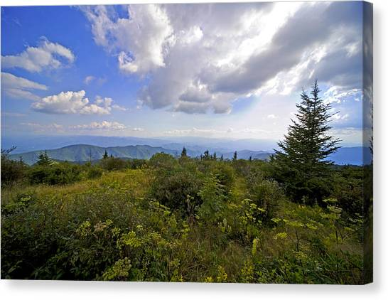 Andrews Bold Canvas Print by Richard Steinberger