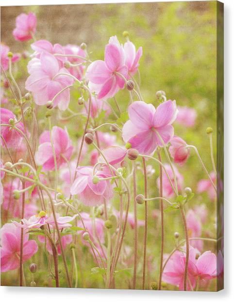 Anemone Dance Canvas Print