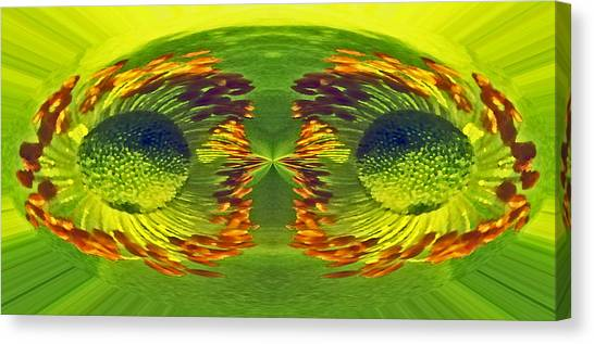 Anemone Eyes. Canvas Print by Terence Davis