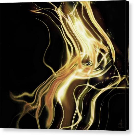 Angel Eyes Canvas Print