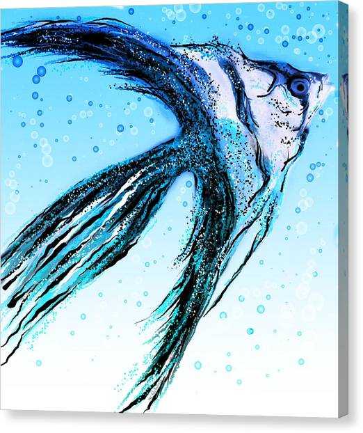 Angel Fish Art Canvas Print