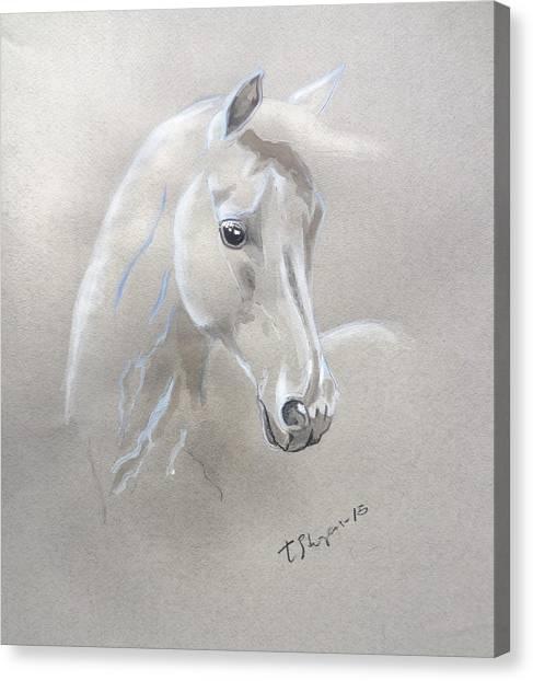 Angel Hair Canvas Print