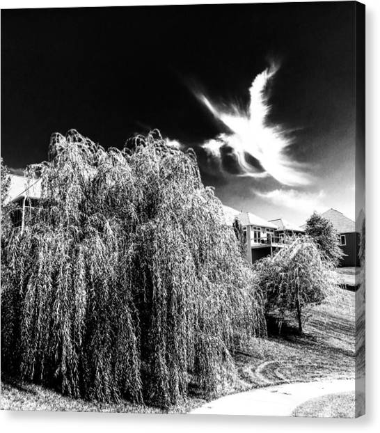 Angel In The Sky Canvas Print