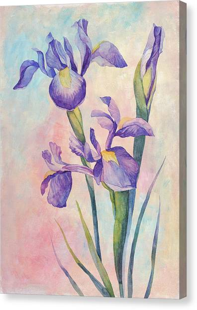 Canvas Print - Angel Iris - Joyful by Amanda Lakey