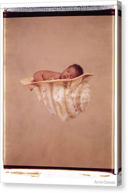 Canvas Print - Angela In A Shell by Anne Geddes