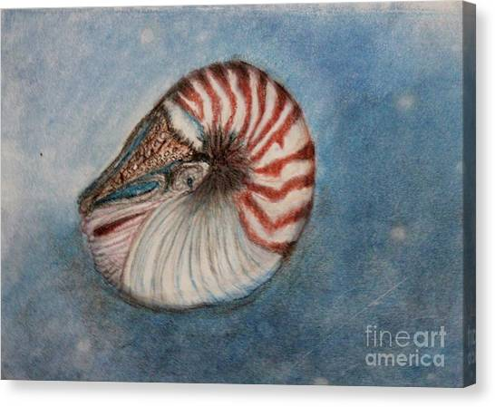 Angel's Seashell  Canvas Print