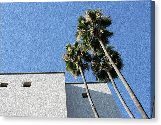Angles And 3 Palm Tress Canvas Print