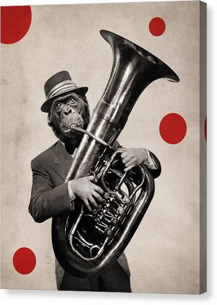 Irrational Canvas Print - Animal17 by Francois Brumas