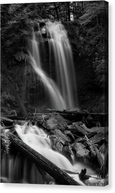Anna Ruby Falls In Black And White Canvas Print