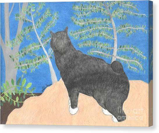 Manx Cats Canvas Print - Annie The Cat Looking Over The Hillside by Julia Hanna