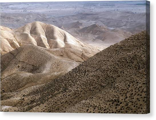 Another View From Masada Canvas Print