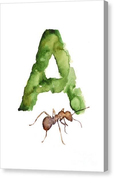Ants Canvas Print - Ant Watercolor Alphabet Painting by Joanna Szmerdt