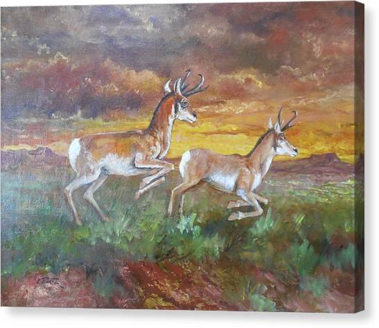 Lynn Burton Canvas Print - Antelope At Sunset by Lynn Burton
