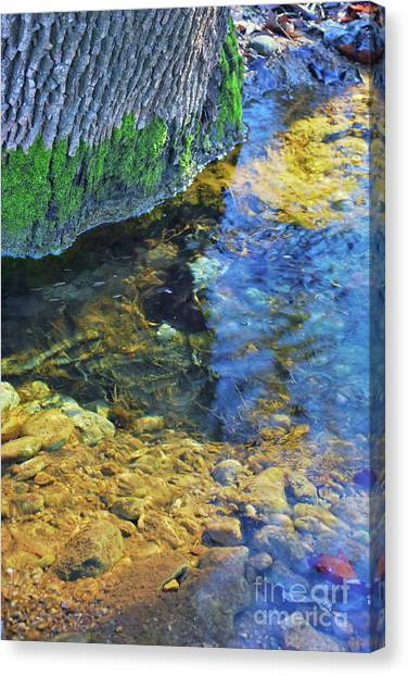 Antelope Springs Vii Canvas Print by Ron Cline