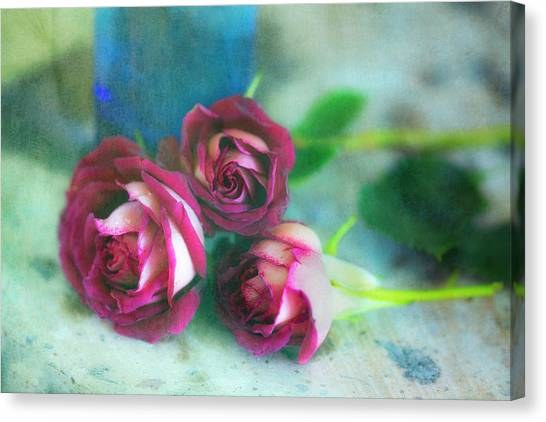 Antique Roses Canvas Print