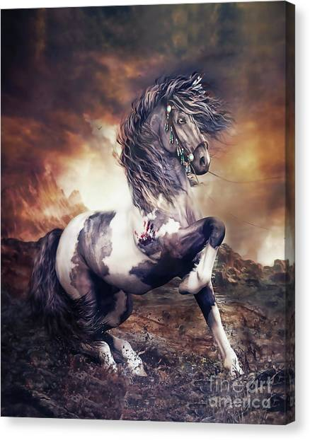 Native Americans Canvas Print - Apache War Horse by Shanina Conway