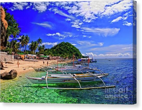 Apo Island Canvas Print
