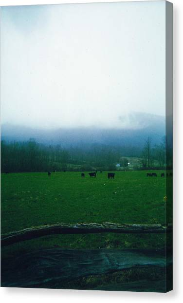 Appalachian Pasture Canvas Print