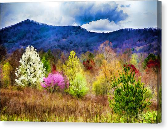 Appalachian Spring In The Holler Canvas Print