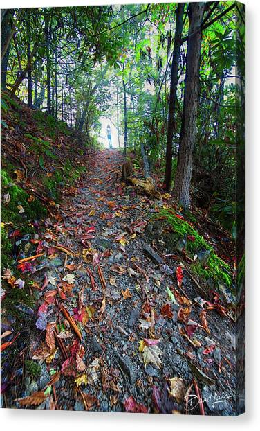 Appalachian Trail Hike Canvas Print