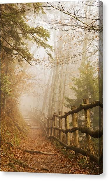Appalachian Trail Canvas Print