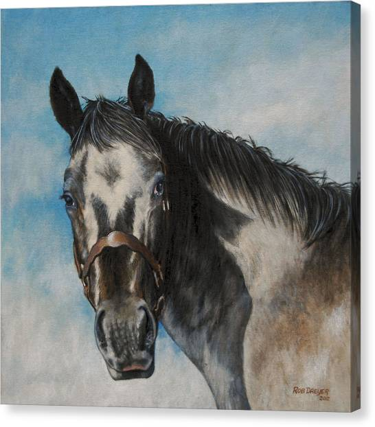 Western Bridle Canvas Print - Appaloosa by Dreyer Wildlife Print Collections