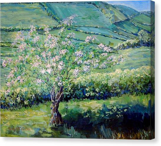 Apple Blossom In The Valley Canvas Print by Wendy Head
