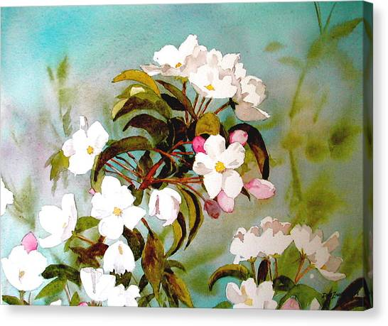Apple Blossoms Canvas Print by Faye Ziegler