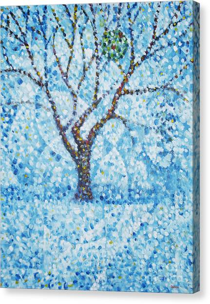Apple Orchard / Winter Canvas Print by Jim Rehlin
