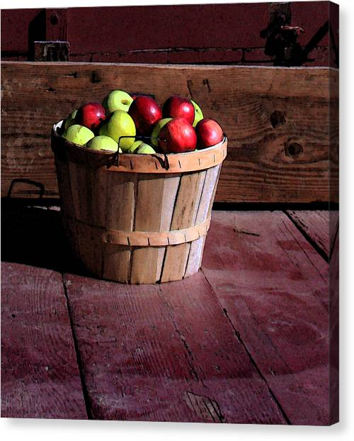 Apple Pickens Canvas Print