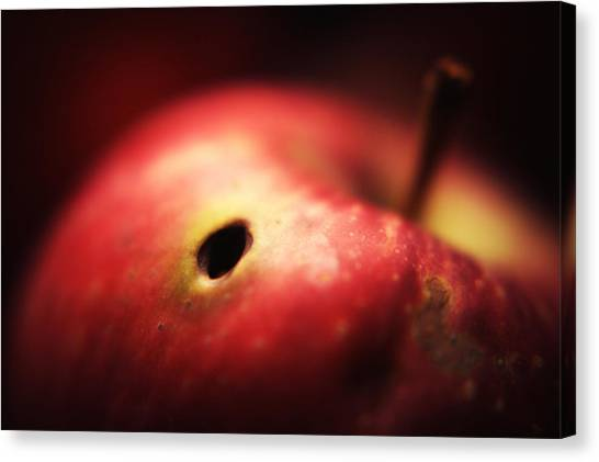 Apple Canvas Print by Svetlana Peric