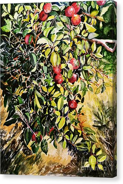 Canvas Print featuring the painting Apple Tree by Priti Lathia