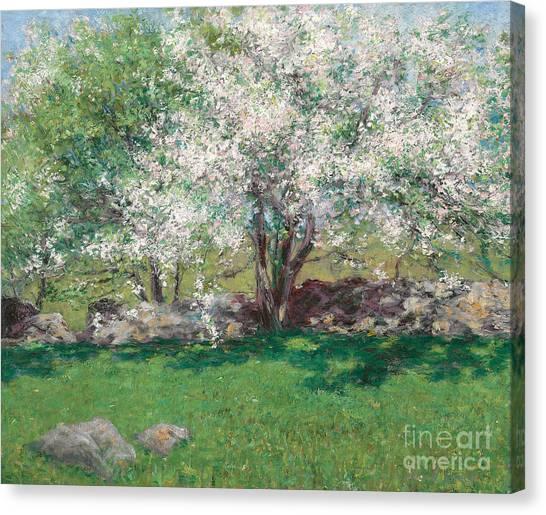 Blooming Tree Canvas Print - Apple Trees by John Leslie Breck
