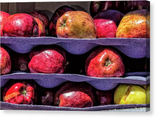 Apples And Sunlight Canvas Print by Robert Ullmann