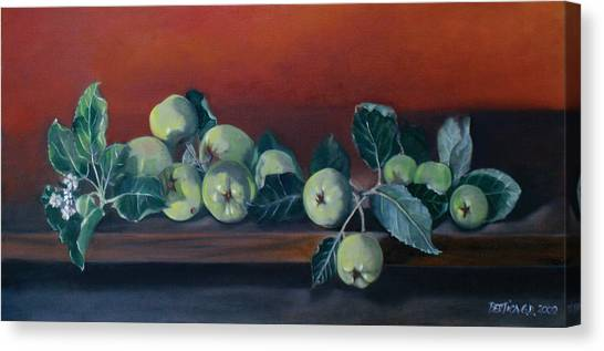 Apples From The Farm Canvas Print by Bertica Garcia-Dubus