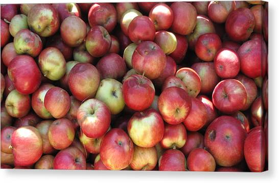 Apples In The Fall Canvas Print by Andrea Kilbane
