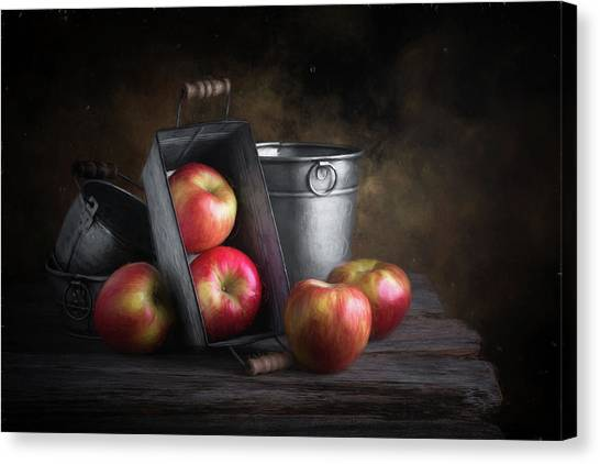 Apples Canvas Print - Apples With Metalware by Tom Mc Nemar