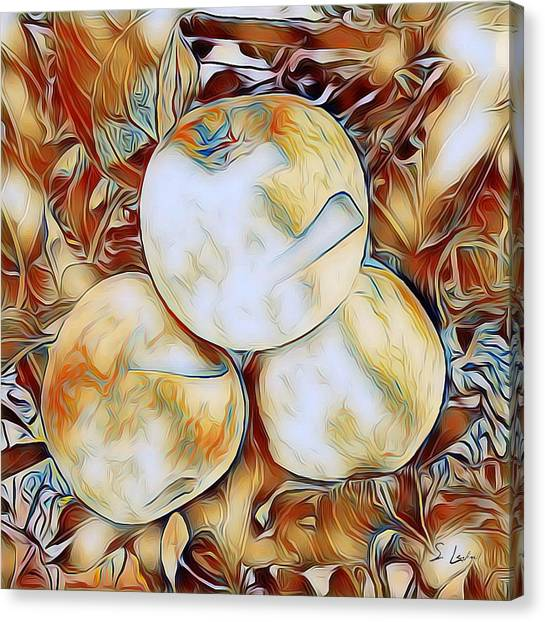 Apples 01 ...06.33 Avant Garde Graphics Canvas Print