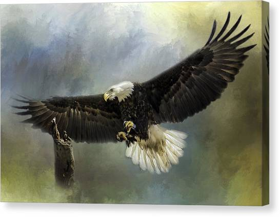 Approaching His Perch Canvas Print