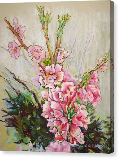 Apricot Energy Canvas Print by Carole Haslock