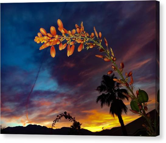 April Showers Bring May Flowers Canvas Print
