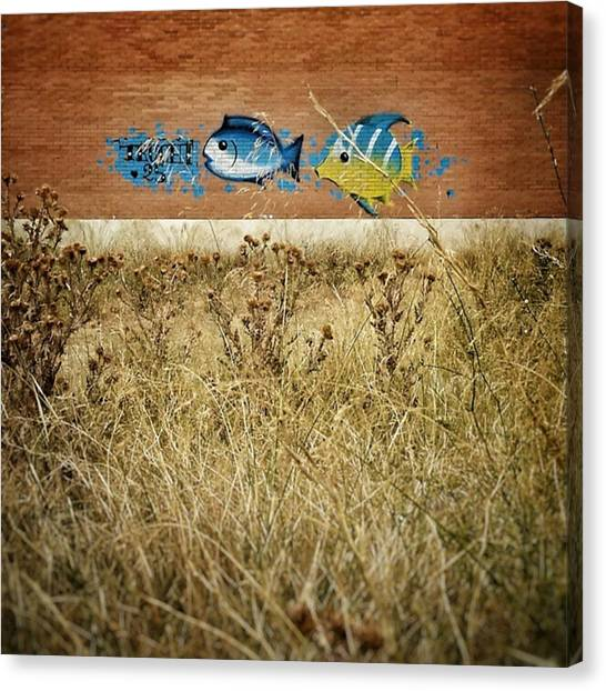 Fish Canvas Print - Aquarium #city #urban #wall #madrid by Rafa Rivas