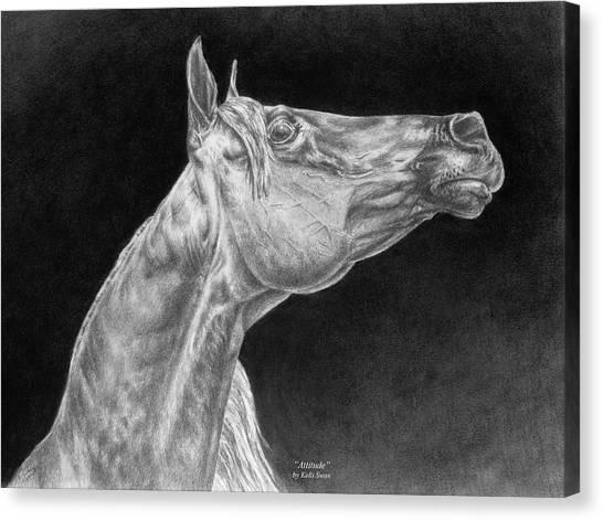 Arabian Horse Attitude Print Canvas Print