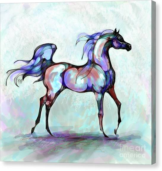 Arabian Horse Overlook Canvas Print