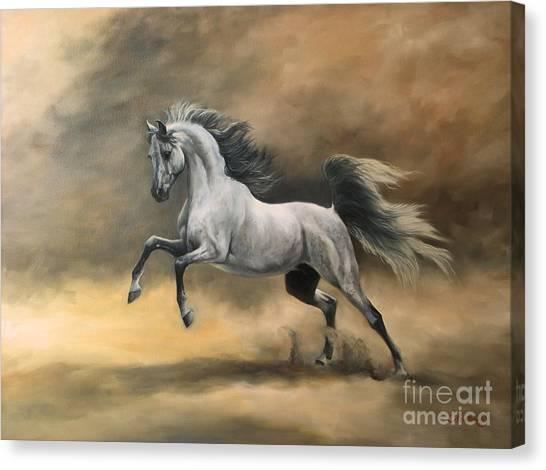 Arabian Canvas Print - Arabian by Jeanne Newton Schoborg