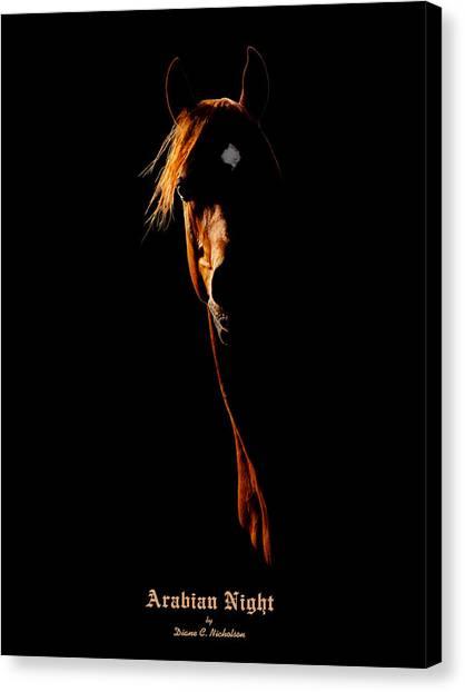 Arabian Night Canvas Print by Diane C Nicholson