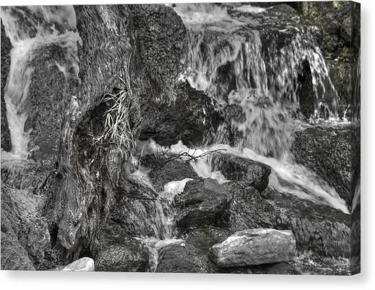 Arboretum Waterfall Bw Canvas Print