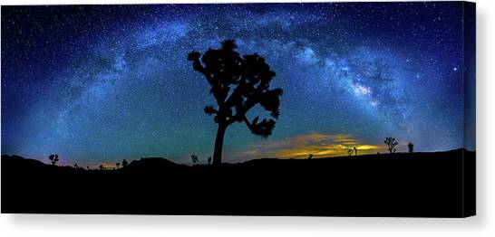 Big Sky Canvas Print - Arc De Joshua Tree I by Peter Tellone
