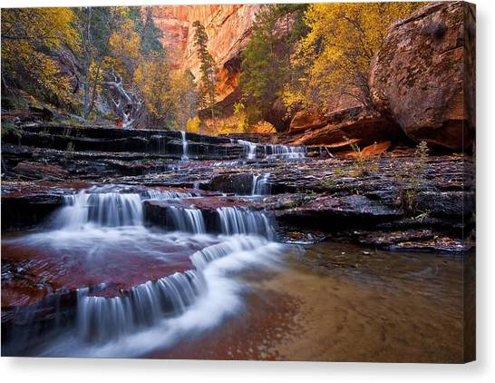 Angel Falls Canvas Print - Arch Angel Falls by Guy Schmickle